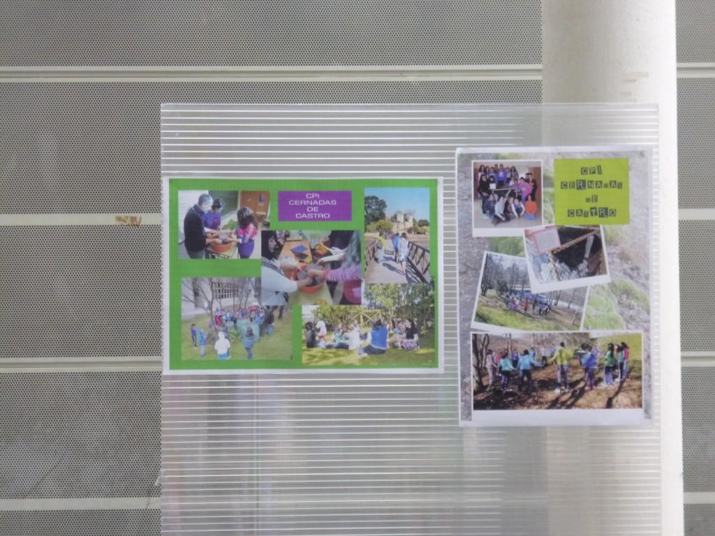 Os nosos posters